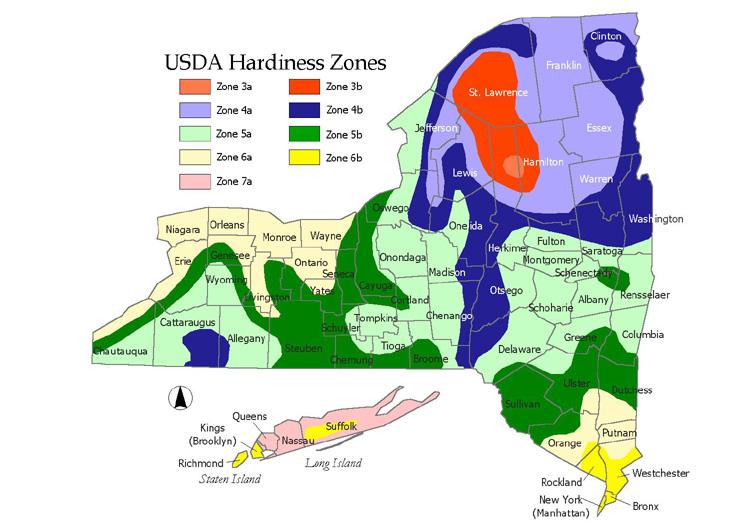 NY Map Of Hardiness Zones