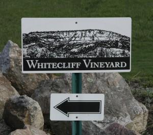 Whitecliff Vineyards, 04