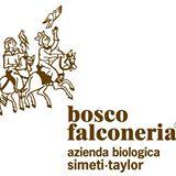 Sicily, Bosco Falconeria Logo